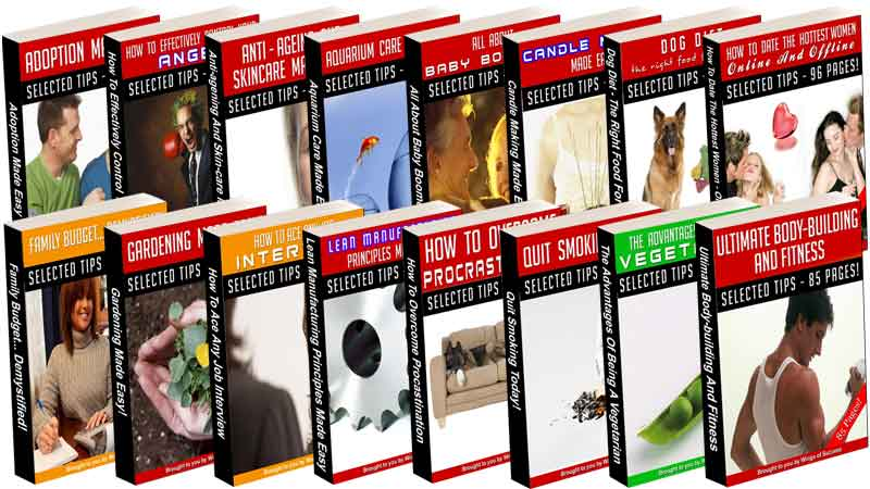 126 Niche Ebooks with Master Resale Rights